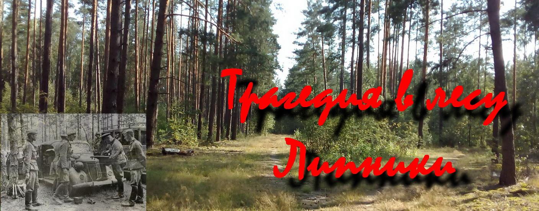 Трагедия в лесу Липники
